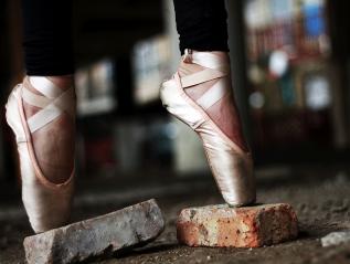 Tamara Bexley Dance – CaseStudy
